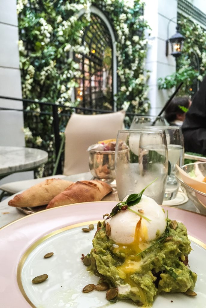 Avocado Toast with Poached Egg - $13